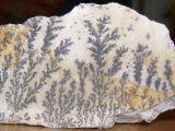 上海蒲西區私人收購古錢幣瓷器玉器青銅器古董當天現金交易