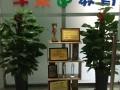 来大兴王府井感受中国传统书画魅力-大兴学乐迪教育公益活动