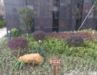 中山别墅景观绿化、中山景观设计、中山花园设计、厂区