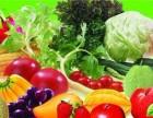 蔬菜水果肉类调料豆制品配送