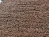 北京建筑渣土清运沙子水泥石子红砖免费配送