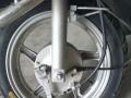 本田佳颖踏板摩托车