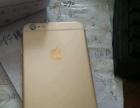 金色苹果六plus