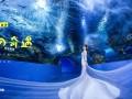 聊城玛雅摄影,海洋馆婚纱照拍摄基地
