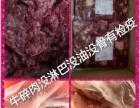 飞扬清真牛肉加工厂全国大量批发宠物食材 全国招代