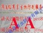 上海灭老鼠服务-灭白蚁服务公司-除蟑螂服务-杀跳蚤