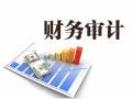专业北京审计项目 投标审计 贷款审计 税务审计 价优