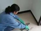 专业家庭保洁、油烟机清洗