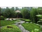 园林绿化 庭院景观设计 各种苗木种植草皮室内外草坪