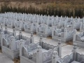 御龙生态公墓