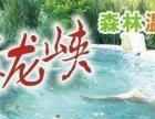 广东德庆盘龙峡生态景区+森林氡温泉+万亩油菜花2日