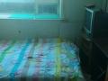 五月花城新装公寓 5室2厅2卫 男女不限