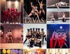 提供大量舞蹈、外籍舞蹈外籍模特外籍乐队各类演艺表演