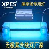 无极紫外线灯管 屠宰场紫外线杀菌除恶臭污染专用灯