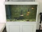 自用金鱼缸8成新出售,地址广州市番禺区