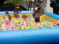 的支架游泳池 充气城堡 充气城堡滑梯 充气水滑梯 厂家直