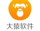 大猿软件java软件开发工程师0起点就业培训课程安排