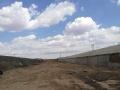 出租5亩大院、适合种植、养殖、开厂、加工