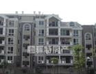 新区小蓝湾雅境电梯4房2厅2卫精装修设备齐全适合大家庭居住