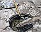 上海普陀区长征环卫所抽粪抽泥浆服务公司