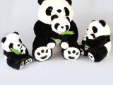 毛绒卡通玩具 熊猫母子玩具公仔 毛绒玩具 批发短毛绒玩具