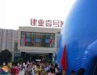 大鲸鱼气模大蓝鲸气模鲸鱼岛海洋球组合出租出售合作