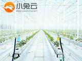 南宁网站设计智慧农业系统商城设计价格