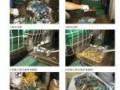服装销毁电子产品销毁破碎(焚烧)特许销毁公司