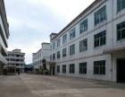 厚街镇新出独院标准厂房13层9000平方出租