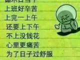 丽江出租大中小挖掘机,承包大小石方工程