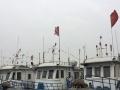 天津出海打渔捕鱼一日游深度海上体验