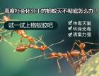 上海商场杀白蚁除四害灭跳蚤公司