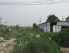 陈家镇政府附近 土地 4500平米