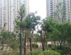 地铁市体育中心站 龙子湖周边安和小区 精装修高品质公寓