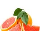 新鲜果巢水果超市 新鲜果巢水果超市诚邀加盟