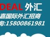 上海世嘉国际外汇招商电话是多少