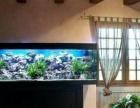 昆明酒吧鱼缸,家庭吧台鱼缸