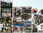 军事展览道具飞机模型出租赁恐龙模型一线展览