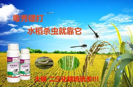 水稻专用杀虫剂 防治卷叶螟特效药 高抗性卷叶螟专用杀虫剂