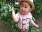 幼儿早教英语助教