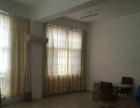 新浦巨龙南路落地窗房屋出租使用面积80平方适合做培