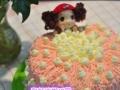 海口订蛋糕品质优秀美兰区专业生日蛋糕免费配送海口美