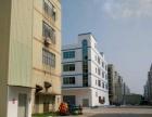 好消息和平新出一楼2000平面积实在带装修厂房出租