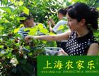 上海周边农家乐推荐 采西瓜摘桑葚 钓鱼烧烤划船 游滴水湖