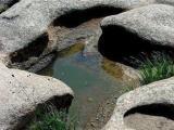 玉龙沙湖-阿墩塔拉-贡格尔草原-哈登营地两日游