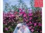 【特价】天气转凉啦外拍约起来2999完美婚纱照