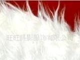 摄影道具 摄影服装 主题背景 单色布 进口背景纸 毛毛布 实景制