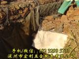 宏利格宾石笼网 辽宁防洪护坡铅丝石笼 河道治理的刚需