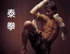 散打,泰拳,跆拳道暑假班选择拳皇