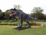 合肥恐龙展出租厂家 仿真恐龙出租 河淼模型